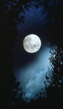 Full Moon 9