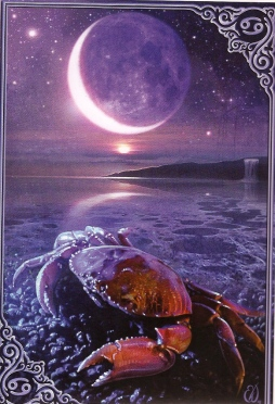 New Moon in Cancer 2