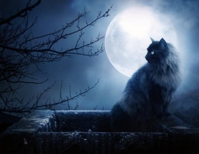Full Moon & Xena