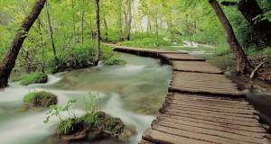 Path over troubled waters