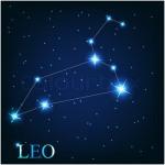 Leo 7