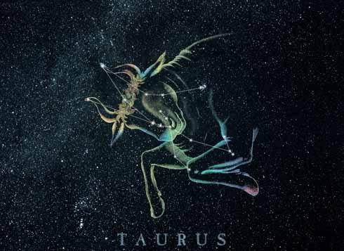 Taurus 13