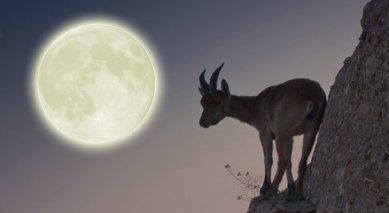 Full Moon in Capricorn 2