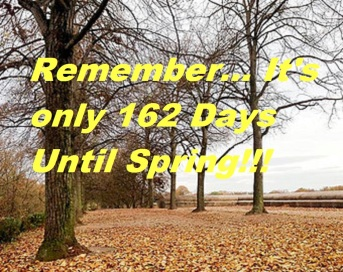 162-days-until-spring