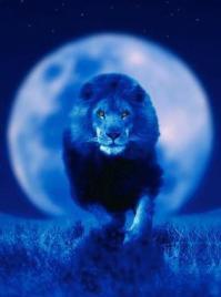 Full Moon in Leo 2.jpg