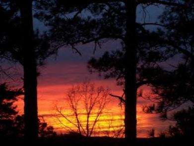 Sunset in AL 2