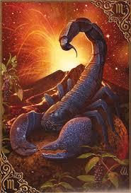 Scorpio 12