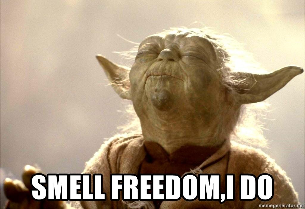 Freedom Yoda
