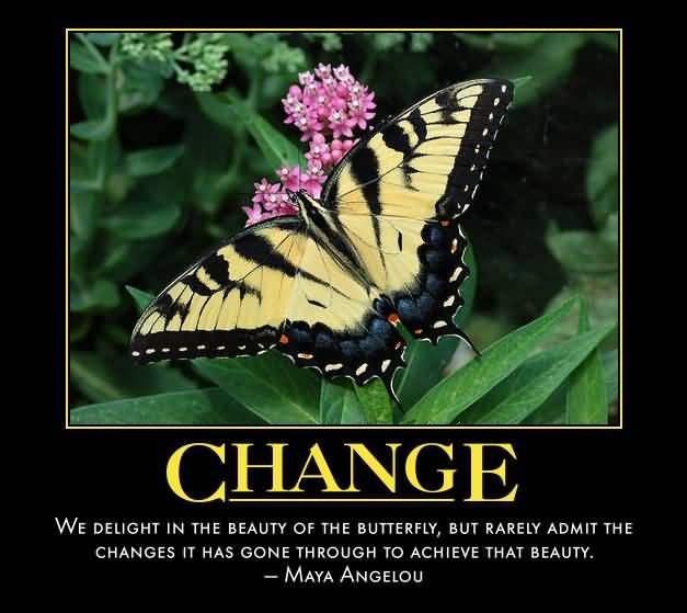 Change 7